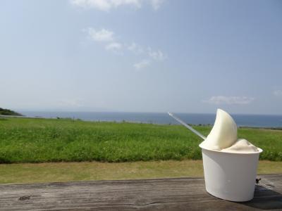 母1人子3人、3泊4日石垣旅行☆Part3.島内観光と石垣グルメを楽しもう♪