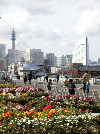 2021年 3月 早春の横浜散歩♪