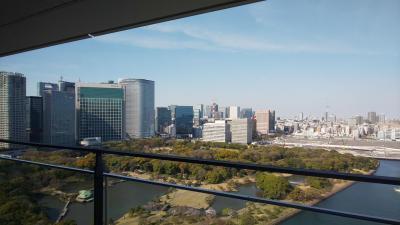 メズム東京 オートグラフコレクションに無料宿泊してきました!①「chapter2 ガーデンビューバルコニー付き」お部屋紹介♪