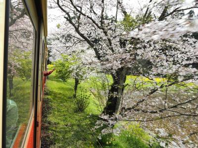春のローカル線に乗って旅気分