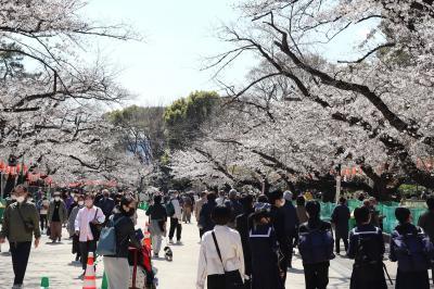 ただ一方通行歩くだけの上野公園