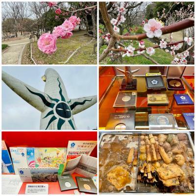 再びの大阪はほぼノープランからの万博記念公園 その2 梅園~EXPO70パビリオン
