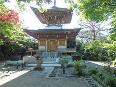 世田谷散策(3) 豪徳寺~代田~上町~宮の坂