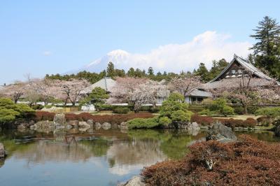 伊豆・箱根、富士山巡りの旅(1日目)