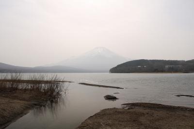 伊豆・箱根、富士山巡りの旅(5日目)