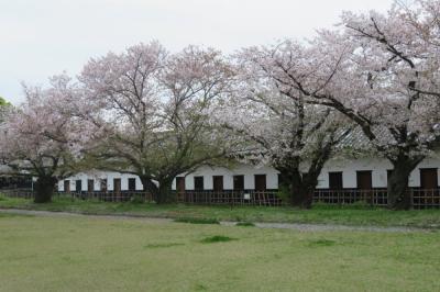 北九州の日本100名城めぐり① ~大野城址と福岡城