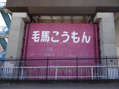 【桜】城北公園~毛馬閘門~柴島