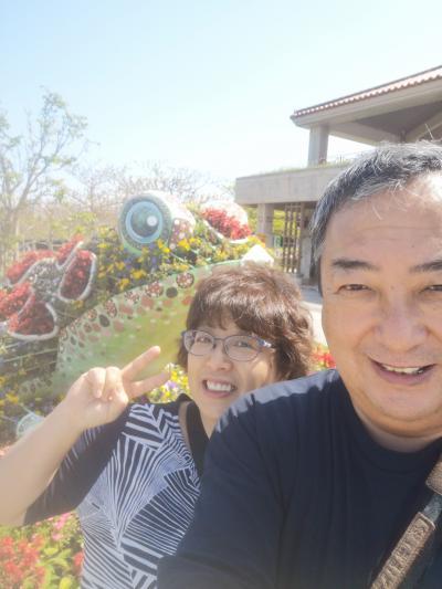 2021春 沖縄に癒される2 今帰仁城&ゴリラチョップ