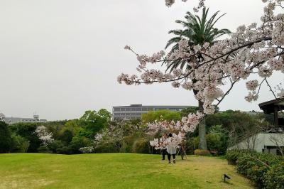 2021春 伊勢志摩の旅 2日目