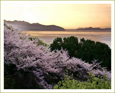 Solitary Journey[2056]春景色満開♪桜を愛でながらドライブ♪<音戸の瀬戸公園さくらの里&豊穣池&デゴイチ>広島県呉市
