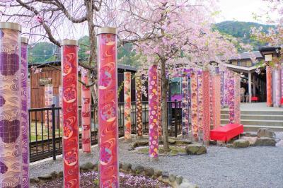京都桜めぐり②  今こそS級スポットの嵐山へ