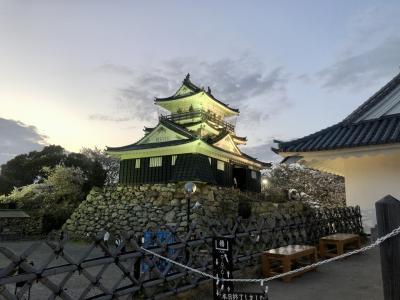 浜松城と桜のライトアップ