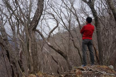 単独登山男子、鳴虫山を登る