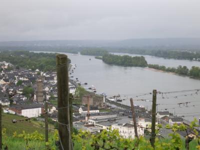 心の安らぎ旅行(2019年 夫目線 Part34 ドイツ10日目 Rudesheim リューデスハイム Rhein ライン川♪)