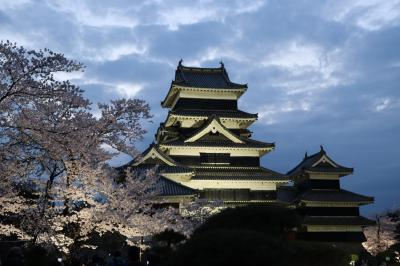 満開の桜を愛でる松本日帰りの旅