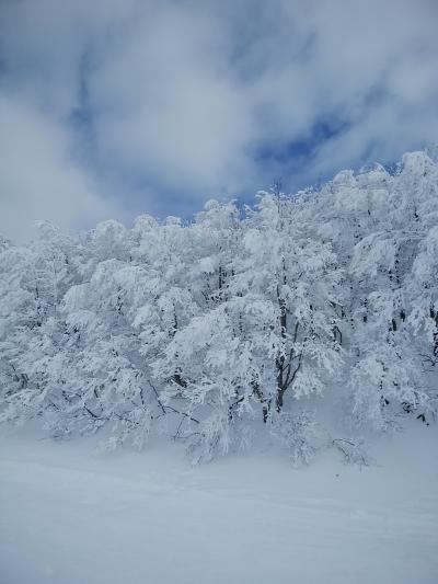 蔵王で温泉とスキー、仙台で牛タンを食すの旅
