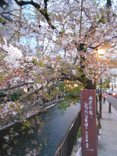 とりわけ儚く、あやしく、なまめかしく 京都