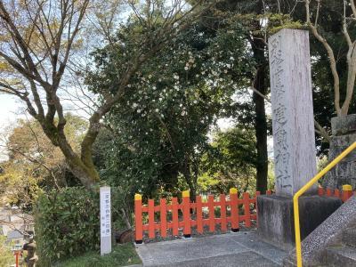 桜2021 京都建勲神社