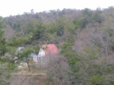 モリコロパーク メイとサツキの家 2021春桜♪