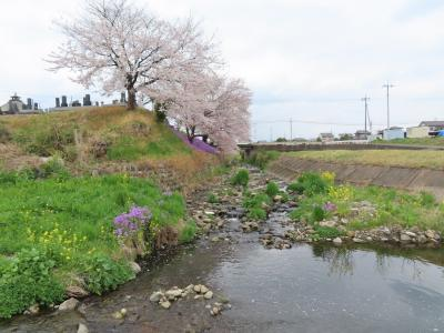 高崎滞在記&「アド街ック天国」で私の育った町:豪徳寺・山下が紹介されました。 高崎 2021/04/03