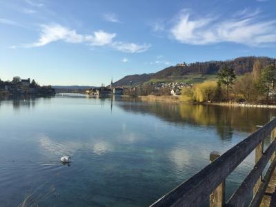 """スイス・ロココの傑作""""知の聖地""""と美しい中世の街""""ラインの宝石"""" -No.2 Stein am Rhein"""
