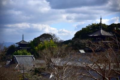 大和の国の古寺巡礼4 二上山の麓 極楽浄土當麻寺を訪ねて