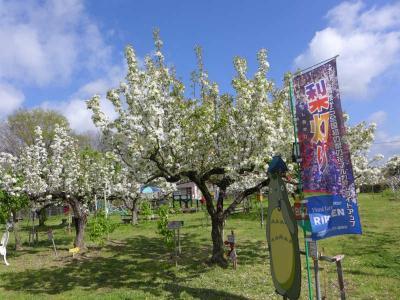 梨の花農園RIKAEN  !  五條市・東阿田町
