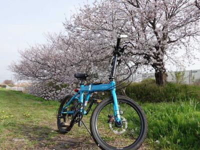 自転車でGO! 2021.03.30 =富士市内を桜を見ながらウロウロ…=