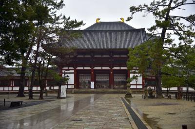 大和の国の古寺巡礼5 春の雨に濡れる奈良公園散策 新薬師寺 東大寺 興福寺を