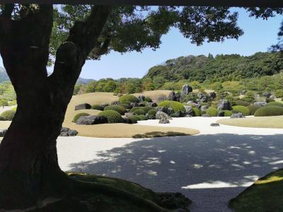 島根&鳥取の主要観光地を初めて巡る⛩️1泊2日