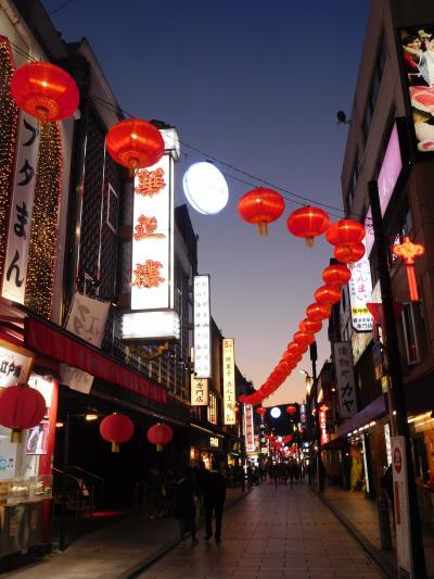 久しぶりの横浜中華街 ぶらぶら散策 ディナークルーズを満喫1泊2日の旅