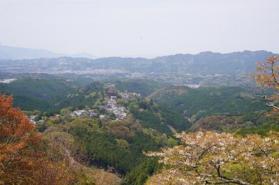 20210408 吉野 吉野山の桜も今年は早いのね。奥千本もだいぶ散ってしまい…代わり?に金峯山寺でえぇもん見られたけれど