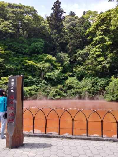 2021GW ほぼ長崎旅行 6泊7日 二人旅 ② 今日は湯布院エリア泊