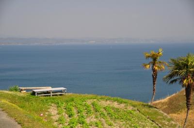 春の陽気に誘われて②♪ アートな島 豊島(てしま)への旅。。