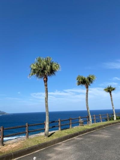 ピーチ航空の格安航空券で、奄美大島の自然とおいしいビールを楽しみたい旅