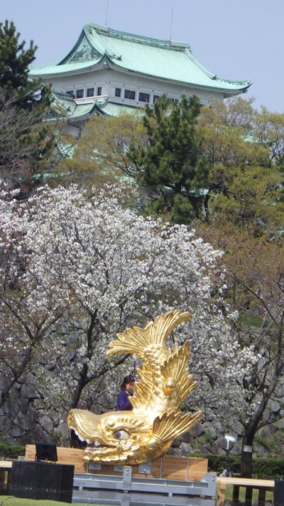 桜 名古屋市内