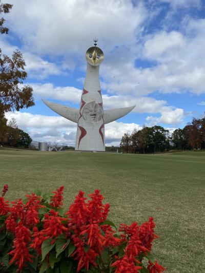 万博記念公園 思いがけずバラ園が素敵だった