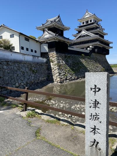 北九州を巡る旅 Vol.2 大宰府、王塚装飾古墳、中津城、宇佐神宮