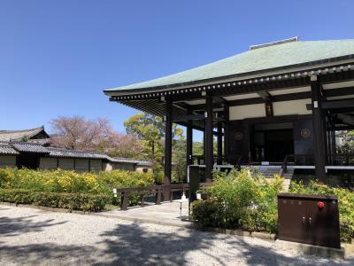 春の奈良 ポケモンマンホール巡り