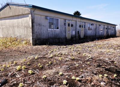 21 北海道・陽春遠き釧路 昭和の集合住宅と炭鉱を辿るぶらぶら歩き旅ー3