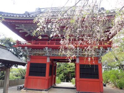 バイクで行く坂東観音巡り 第24番 雨引山 楽法寺