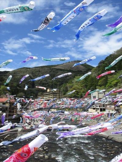 水害からの復活 2年ぶりの杖立鯉のぼり祭り