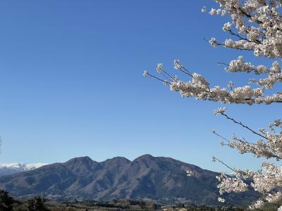 伊香保佛光山法水寺、昭和インター、須賀の園、花と山と♪