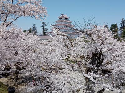 日中線跡と鶴ヶ城の桜2021