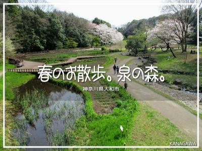 春のお散歩。泉の森。