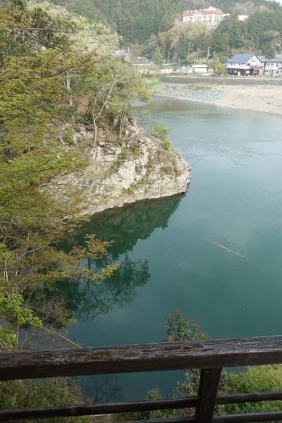 【2泊3日 春の愛媛 ひとり旅】お城と桜と橋と鯉!の巻 5