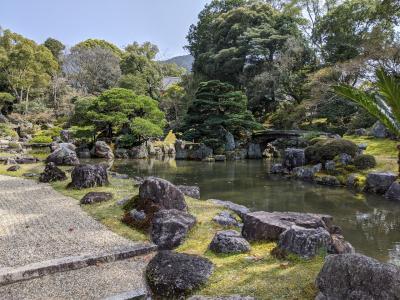 醍醐寺の桜 3     「三宝院」