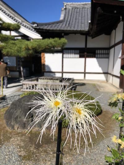 京都再発見2
