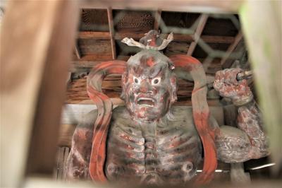 養父市お寺巡り枝垂れ桜が散ってしまった西方寺・金剛力士像が素晴らしい今滝寺・お助け地蔵がいる日光院