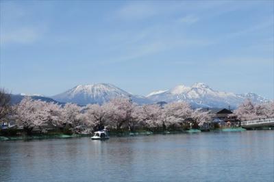 2021年04月 長野・須坂市の臥竜公園の桜を見に行ってきました。